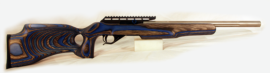 Jag Arms Model 2213 Blue